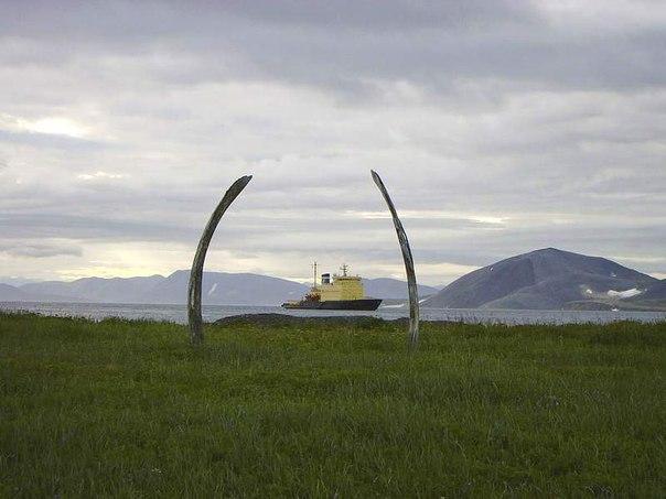 китовая алея