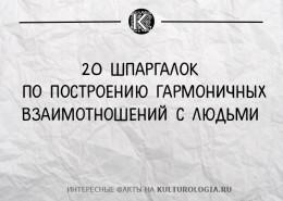 principi-100